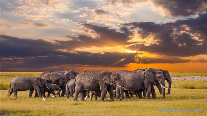 微软推出新的自然类Windows 10免费壁纸包庆祝世界地球日