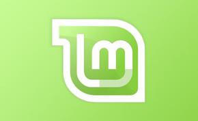 Linux Mint 19.2 Tina BETA发布,包含Cinnamon、MATE、Xfce三个桌面
