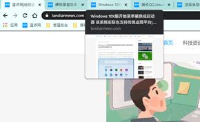 [优化] 谷歌浏览器新版选项卡显示网页标题 其实也可以换成显示网页预览