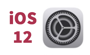 苹果面向iPhone 5S、6用户发布iOS 12.4.4更新 仅含安全性更新