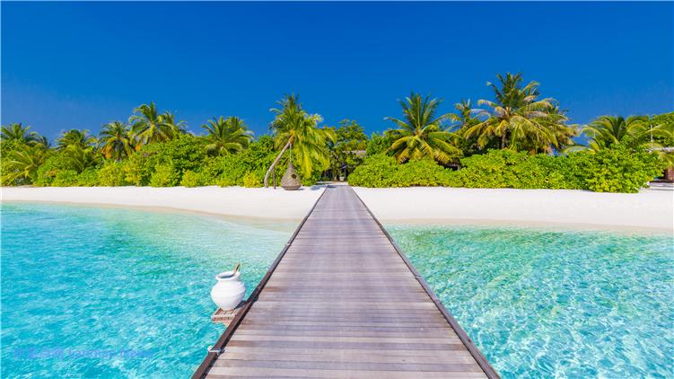 微软推出新的冬季限定Windows 10 4K高清主题壁纸阳光与沙滩(免费)