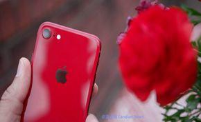 传闻中的iPhone SE 2发布会由于疫情或被取消 惊爆最终命名仅为iPhone