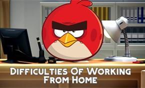 在家远程办公真的毫无缺点吗?愤怒的小鸟开发商表示严重影响生产力