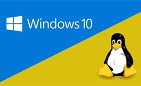 知名开源倡导者认为Linux最终会赢得桌面之战 因为Windows变成皮肤
