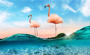Adobe Photoshop图像处理软件获得多个AI新功能 帮助用户自动处理图片
