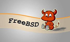 知名操作系统FreeBSD 13.0版正式发布 13.x系列支持周期到2026年1月