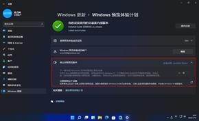 微软很快将会把Windows 11预览版推送至Beta通道 现在跑还来得及🤣