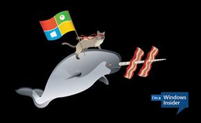 微软发布解决方案修复部分用户无法切换Windows 11 Beta通道的问题