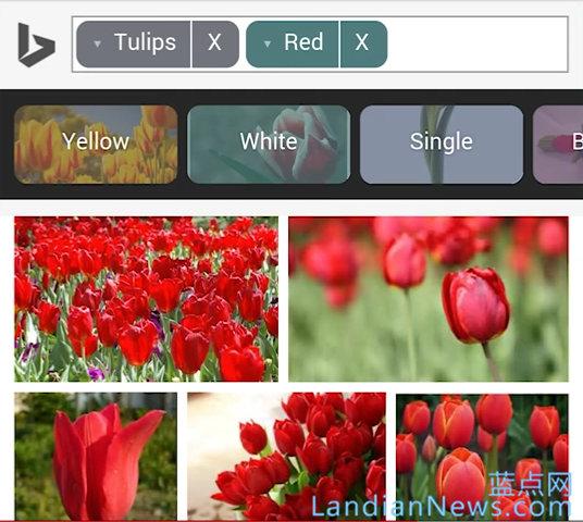微软为iOS和Android改善Bing图片搜索的用户体验 让你更快的找到喜欢的图片